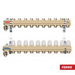 Set Distribuitor tip RZ Ferro 1 x 10 cai (RZ10S)